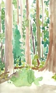 Warercolour Sketch