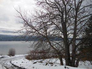 Kootenay Lake in winter