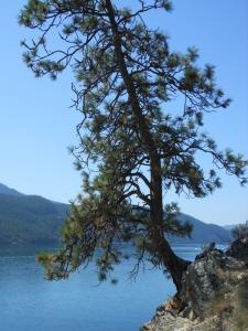 Kalamaka Provincial Park, near Vernon BC Canada