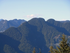 View from the Dog Mountain of Lynn Peak,