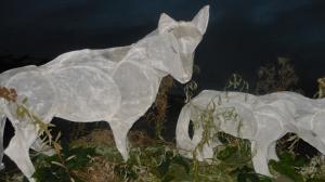 Wolves Lanterns