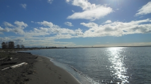 Sunny fall afternoon at Iona Beach, Sea Island, Richmond, BC.