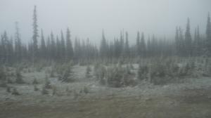 Snow on the Kelowna connector Hy-way. Taken  June 12 2015