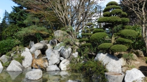 Japanese Garden at Hope